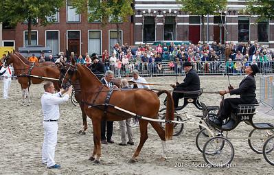 nederland 2018, groningen, ossenmarkt, paardekeuring bommen berend