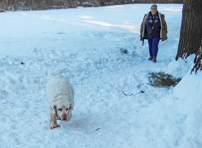 Groton Place (not your average dog park)
