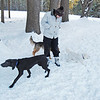 "NASHOBA VALLEY VOICE/ANNE O'CONNOR<br /> Dogs circle Kira Shaikh. The ""dog park"" is a favorite location in Groton. Dog walkers are welcome at Groton Place, the property owned and managed by the New England Forestry Foundation."