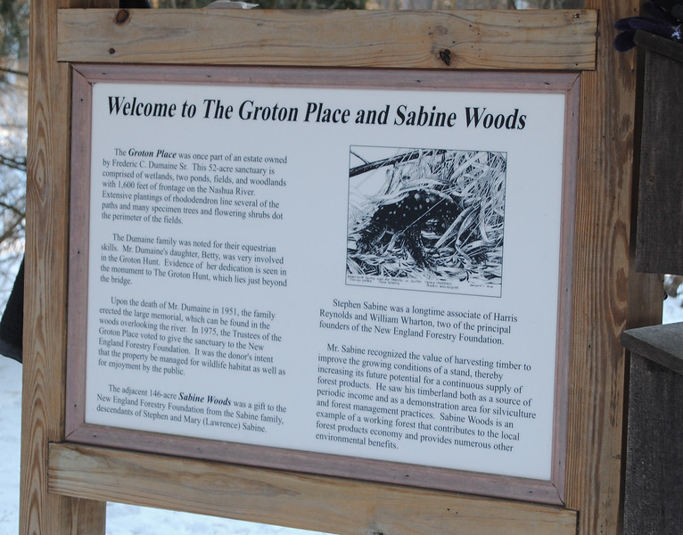 """NASHOBA VALLEY VOICE/ANNE O'CONNOR<br /> The """"dog park"""" is a favorite location in Groton. Dog walkers are welcome at the property owned and managed by the New England Forestry Foundation."""