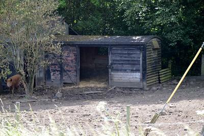 B75xxxx 12t Vent Van Plank, North side A69, Melkridge, Northumberland   24/06/17