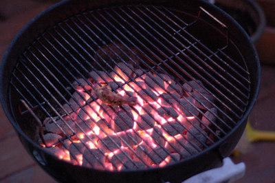 charcoal and flame undergoing metamorphosis