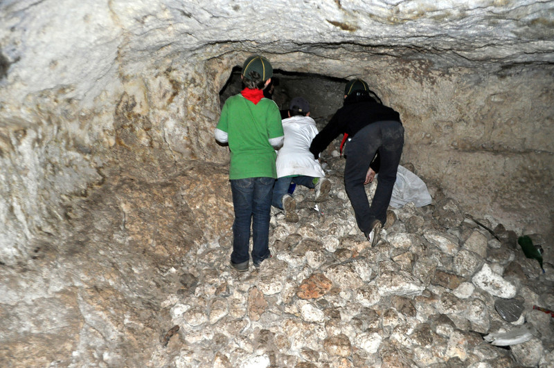 Cubs explore the caves for a couple of minutes....could they have discovered something new???