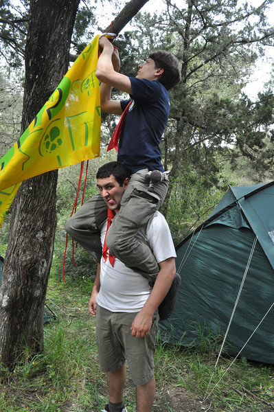 Tabaqui and Akela improvise to try hang the new Cub flag