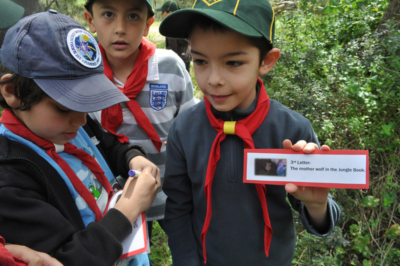 Cubs find their clues and start to guess the name of their six!