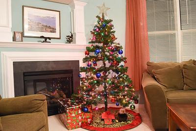 Christmas 217 in Hattie's Meadow