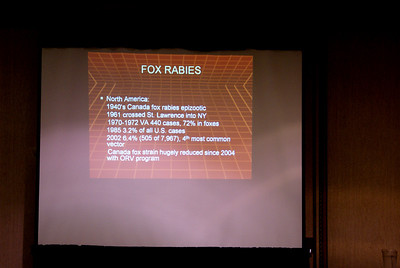 Fox Rabies segment of presentation
