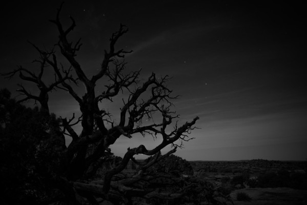 moab-2013-84