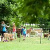 Stockbridge: Berkshire Botanical Garden: PlayDate!: Children with goats and llama