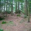 Sheffield: Bartholomew's Cobble: Cedar Hill Trail: Hillside