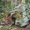 Sheffield: Bartholomew's Cobble: Gnarly Quartzite boulder