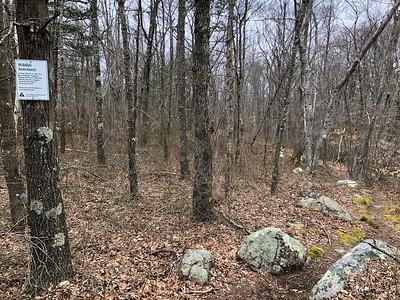 Mass Audubon Land near Pine Pit