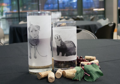 Whatcom Humane Society Wine Event