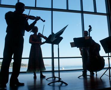 Bohemian Quartet Family Concert 2014-07-12