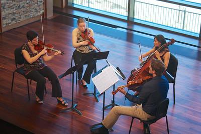 Strings 'n Things Community Concert 2013
