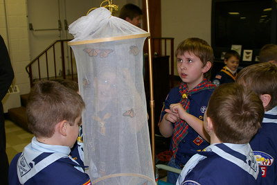 February 2006: Scouts marvel at the butterflies brought by Rick Mikula, Blue & Gold Banquet