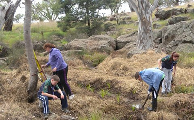 2nd Melton Scout Group  Landcare Badge the beginning Manson Drive
