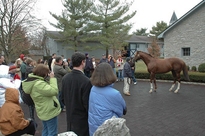 2009 Stallion tour (26 of 41)