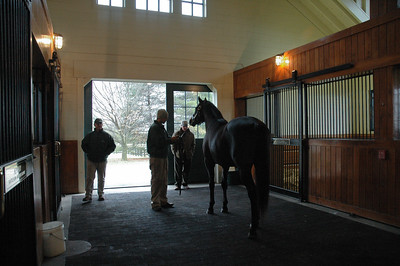 2009 Stallion tour (13 of 41)