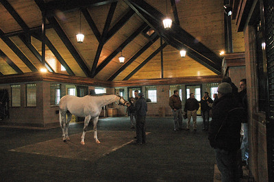 2009 Stallion tour (16 of 41)
