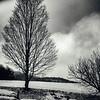 Vermont-12-2014