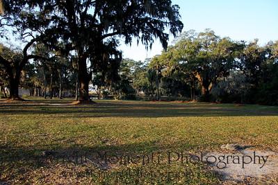 Grove Point Edited - 0039