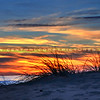 grover-beach_3028