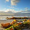 grover-beach_6419
