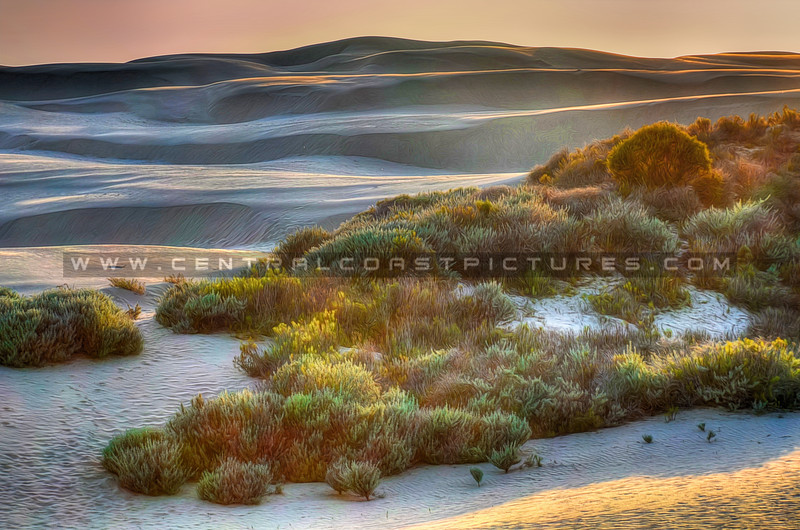 dunes painted_7848