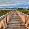 grover boardwalk-0707-e