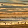 grover-beach_0264
