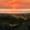 grover-beach-dunes_9648