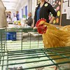 Growing Place held a fair at the Boys and Girls Club of Fitchburg And Leominster on Saturday for everyone to come and learn about gardens, good eating and more. Sweety a three year old Buff Orpington chicken from Parridge Farm out of Templeton was on had at the fair. SENTINEL & ENTERPRISE/JOHN LOVE