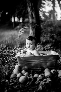 00014-©ADHPhotography2019--EverettGass--CitrusBaby--August25