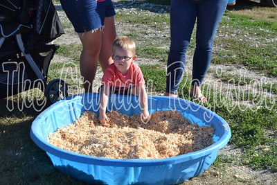 Scenes from the 2018 Grundy County Fair