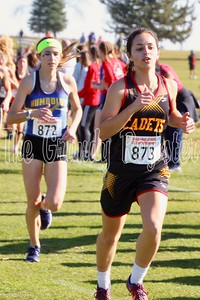 Iowa Falls-Alden/AGWSR's Aubrie Fisher (right) stays ahead of Humboldt's Bryce Gidel early in the 3A state cross country race at Fort Dodge. (Jake Ryder photo)