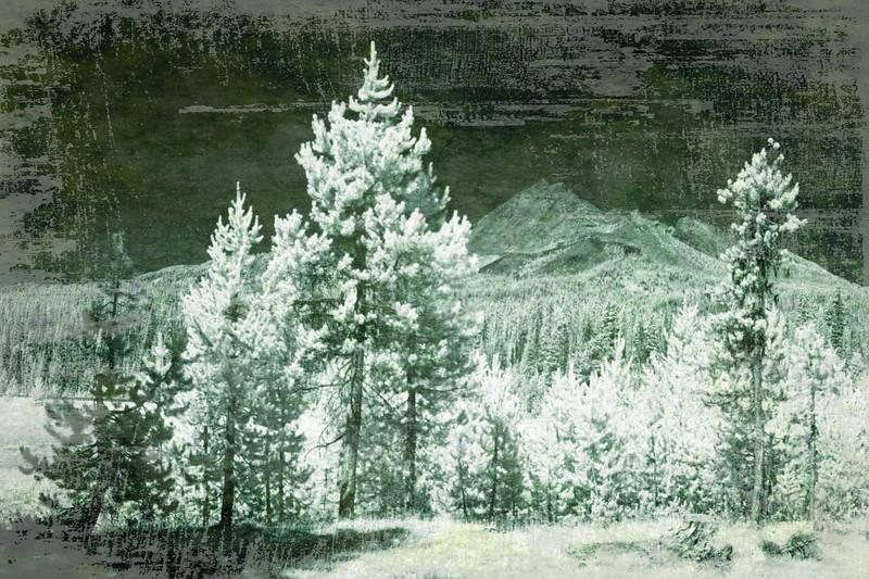 pine green ...