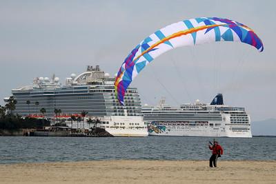 Covid idles cruise ships