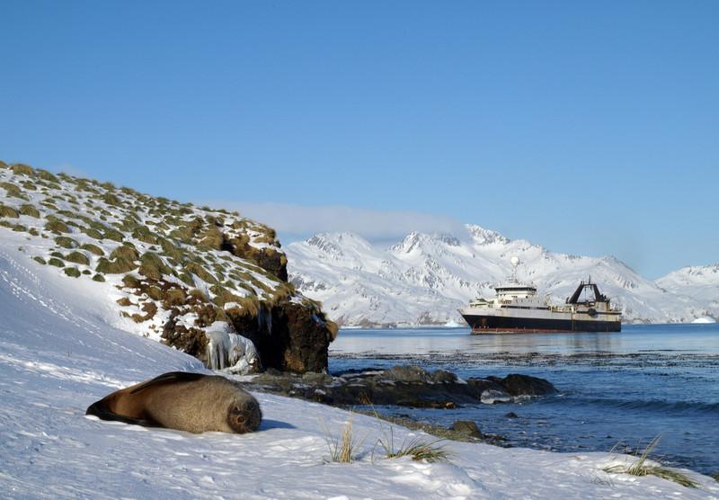OLYMPUS E-510 14-42mm<br /> <br /> Saga Sea in Grytviken, South Georgia