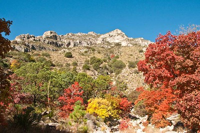 MacKittrick Canyon, Guadalupe Mountain National Park, Texas