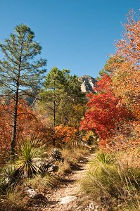 "Devil""s Hall, Guadalupe Mountain National Park, Texas"