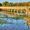 oso-flaco-lake-boardwalk_4453