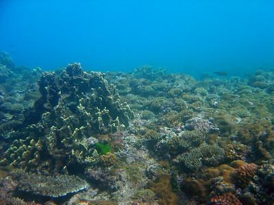 Snorkeling near Ipan Beach Park - 12/20/04