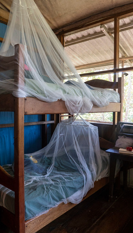 Volunteering with Animals in Guatemala: Dorm room at ARCAS
