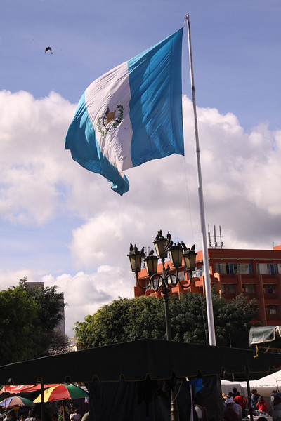 National flag of Guatemala.  It has a Quetzal bird in the center with the usual other paraphernalia.  Could be we think it very pretty because of the Carolina Blue at each end.
