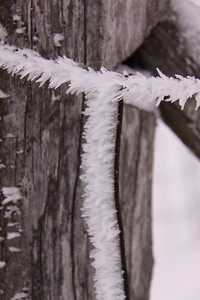 Hoar frost forming on the lee side of woven fencing that surrounds the garden... it has its own beauty.
