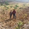 Un Centro de Aprendizaje para el Desarrollo Rural, CADER, está conformado por un grupo de 25 familias que gestionan una parcela agrícola en forma conjunta (esfuerzo propio y ayuda mutua) y que además gestionan ante diferentes instancias: locales (su municipalidad), nacionales (MAGA, SESAN, entre otros), internacionales (ONGs, Organismos de cooperación multilateral, bilateral) apoyo en insumos para convertir la parcela en un sitio demostrativo de buenas prácticas agrícolas, que reducen el riesgo de desastres en la agricultura, promueven la seguridad alimentaria y nutricional y son un mecanismo para la adaptación al cambio climático.
