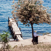Man standing against a tree by Lake Atitlan