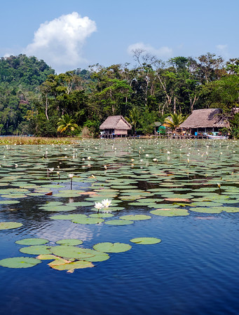 Houses along the Rio Dulce River in Guatemala