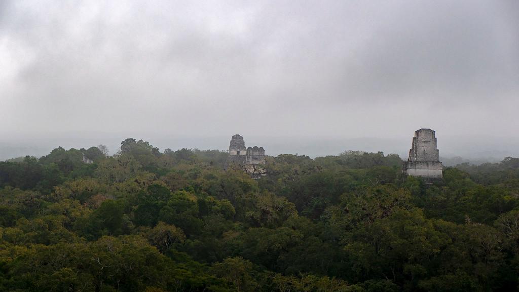Tikal Guatemala: Tikal Sunrise Tour - Tikal Tours